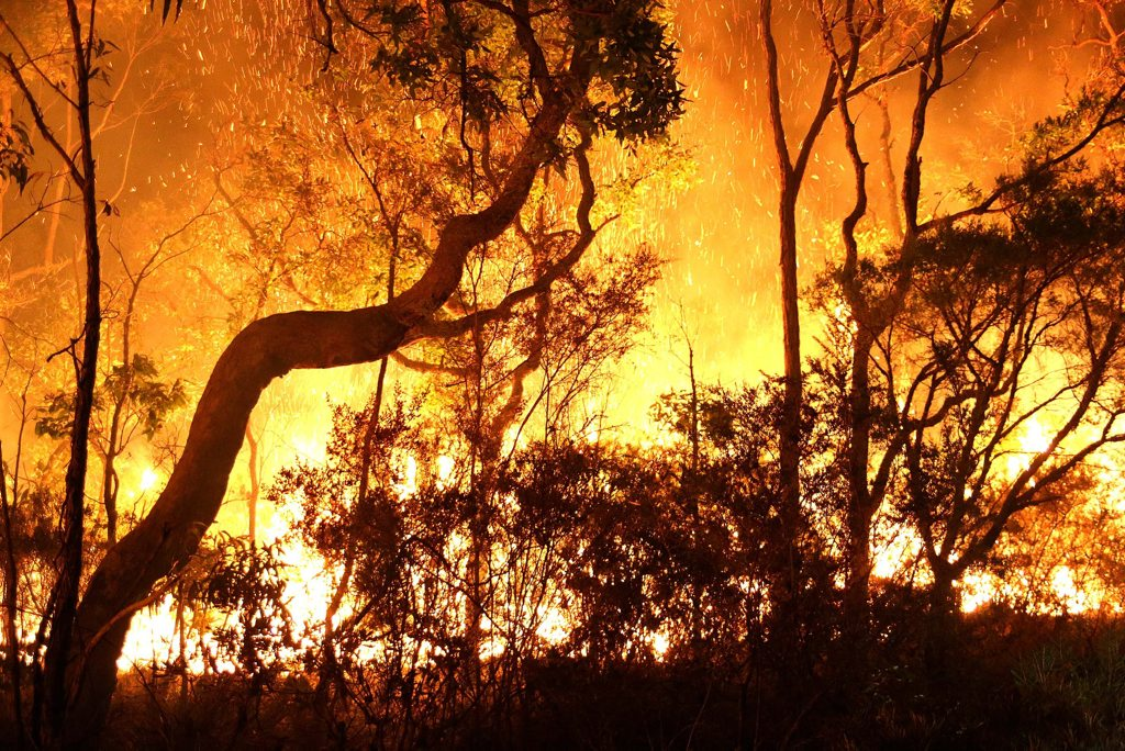 Queensland's firefighting union is taking the government to court over 'unfair contracts' for part-time personnel. It follows massive blazes which tore through parts of northern New South Wales earlier this month.