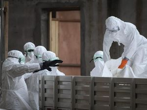 Australia commits $1m to West Africa to halt Ebola outbreak