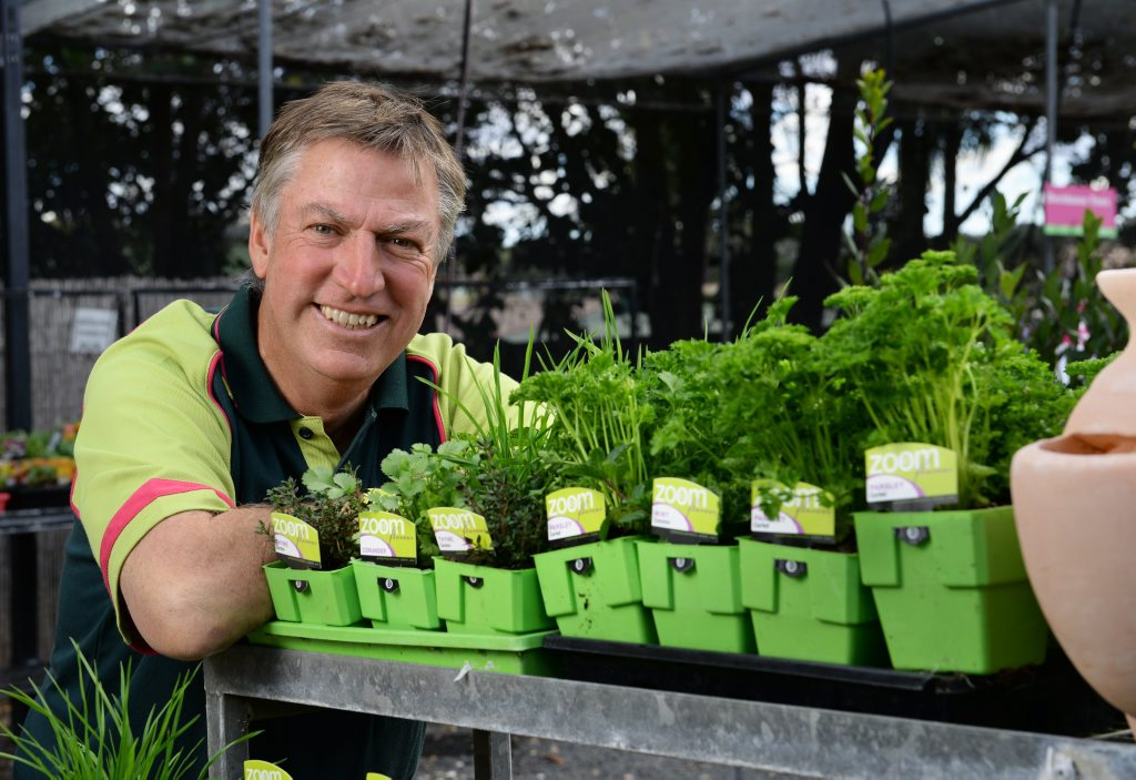 SERVICE ORIENTED: Plants Plus Ipswich owner Brad Riches, in a growing business.
