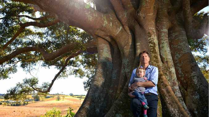 WAITING GAME: Steven Lang and his granddaughter Helen on the site of the revegetation project in Maleny.