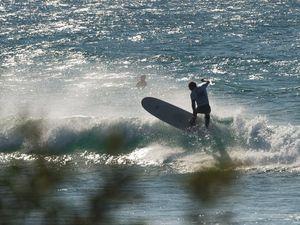 Film festival focus on surf