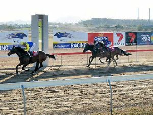Rocky horses dominate at Gladstone Cup meet