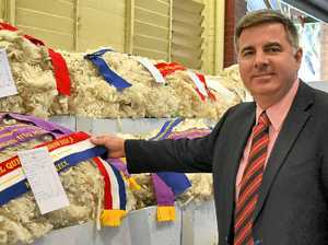 Wool quality up at the Ekka despite drought
