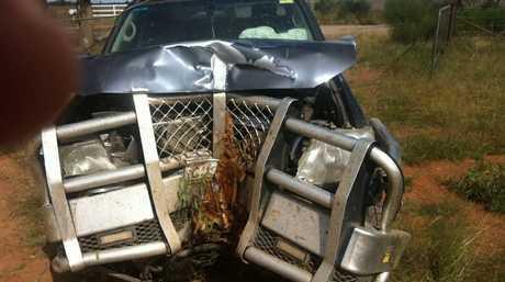 A customer sent this photo to Tuff Bullbars after hitting a tree at 80kmh.