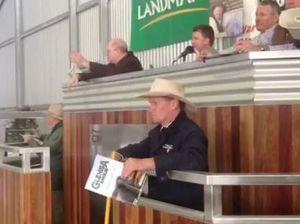 Glenisa Bull Sale results in bidding war
