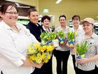 Bec Parr, Andrew Gibson, Sue Hoskings, Nicki Hughes, Kerrie Chilcott and Tegan Harvey gear up for Daffodil Day at Coles Pialba.