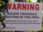 Third croc spotted in Mary River, four traps set