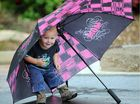 Angus in his glory when the rain falls