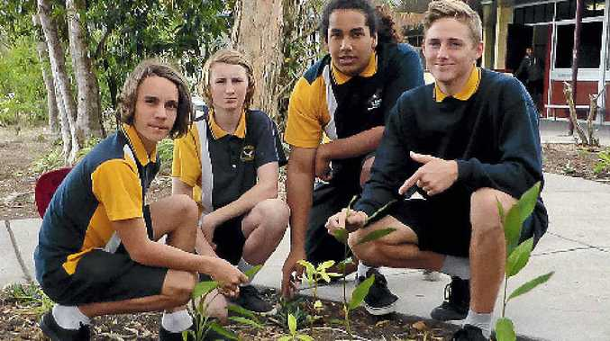 PLANTING DAY: Angus Haager, Nathan Ryall, Jaleel Fewquandie and Riley Lourigan join in.