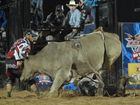 That's gotta hurt: the worst wrecks in bull riding