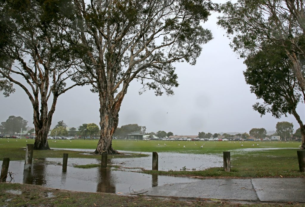 A severe weather warning is in place for damaging winds and heavy rain for people in the Northern Rivers forecast district