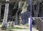 Parcel in bushes brings Gladstone area to standstill