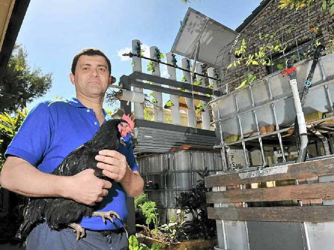 READY TO EAT: Simon Hartley of Goonellabah will open his home to the public as part of Sustainable House Day.