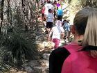 FIRST WALK: Sunshine Coasters climb Mt Coolum in honour of Sam Martin.