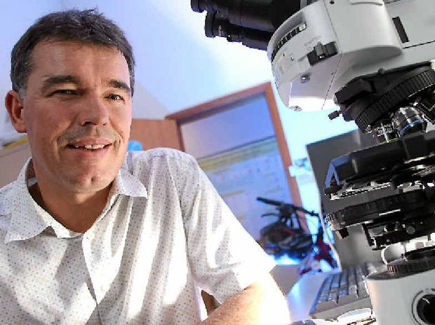 University of Sydney's Director of Psychopharmacology Iain McGregor is researching cannabis.