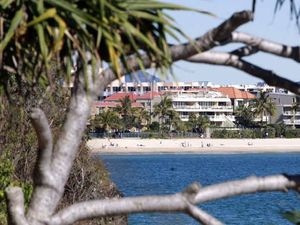 Noosa: Tourist hub drenched in drunks and bad drivers