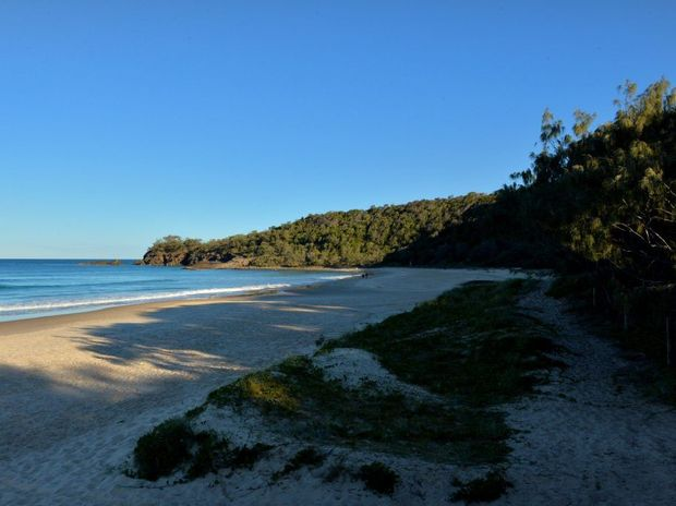 Alexandria bay in Noosa National Park has long been used and promoted as an 'unofficial nude beach'.