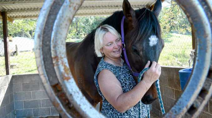 CUP HOPEFUL: Lismore trainer Sharron Pepper is eyeing off the Ballina Cup with Bingo Bobby. He will race at the Lismore Turf Club TAB meeting today.