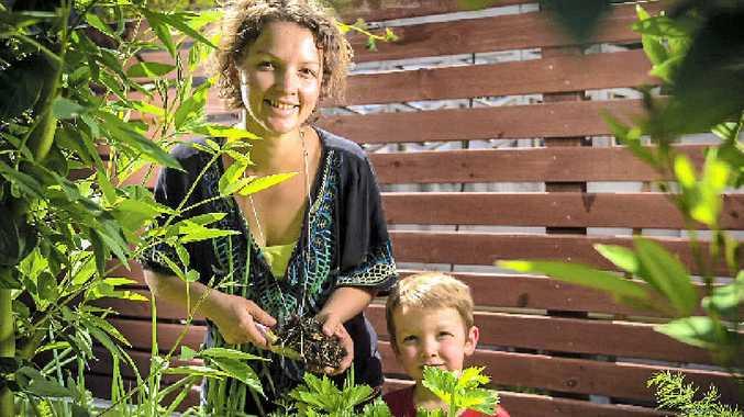 REGENERATION: Keita Messenger and Rusty, 4, in their Glen Eden garden.