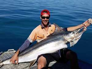 Marlin caught on a handline