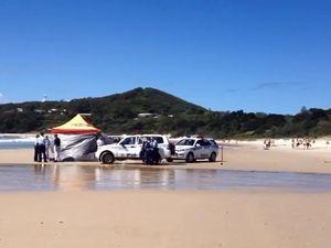Shark attack scene