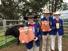 WINNERS: Downlands College cattle show team winners Cloe Wallace, Year 11, Alastair Scott, Year 10, and Jeidi Nicholls, Year 10. Photo Tara Miko / The Chronicle