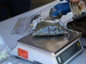 Nimbin drug raid evidence
