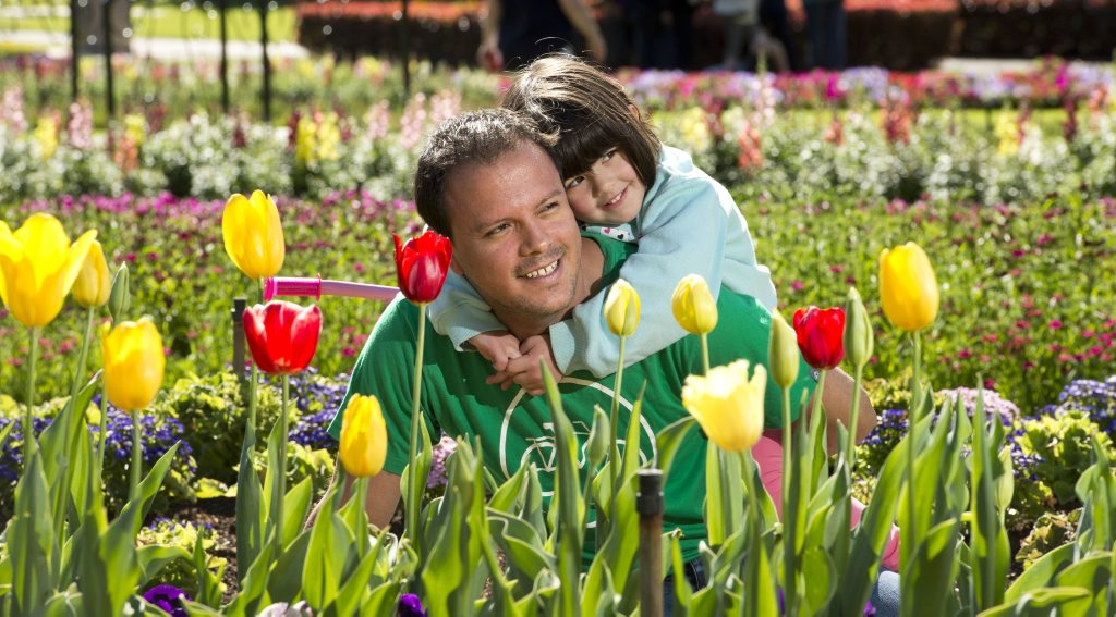 Juan and Alana Reyes 4 yo enjoy the spring flowers in Queens park. Sunday, Sep 14, 2014 . Photo Nev Madsen / The Chronicle