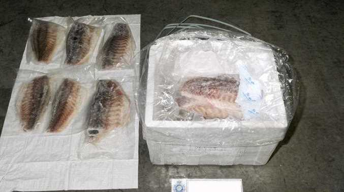 Two Canadian-Vietnamese dual citizens have been charged with smuggling heroin and methamphetamine worth 75 million Australian dollars ($68 million) hidden in a consignment of frozen fish fillets shipped from Kuala Lumpur to Sydney, officials said.