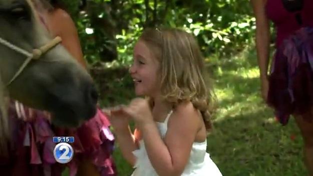 WATCH: Six-year-old girl meets real-life unicorn | Sunshine Coast Daily