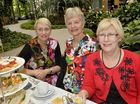Shelley Haley, Pam West-Newman and Merryn Hodge at the Soroptimist International high tea.