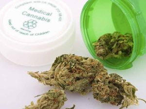 Australian-first medical cannabis trial starts next year