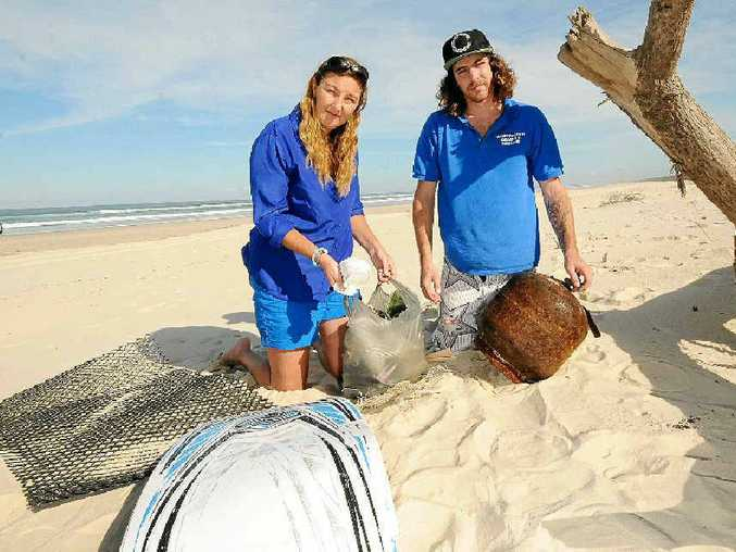 BIG PROBLEM: Seabird Rescue general manager Kathrina Southwell and volunteer Corey Ward pick up rubbish at the Richmond River nature reserve, South Ballina. Southwell is also pictured (below) with a Gould's petrel in Seabird Rescue's care.
