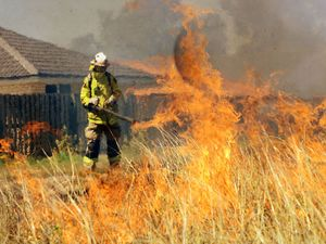 Blackstone Grass Fire