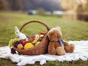 Teddy bears are having a picnic