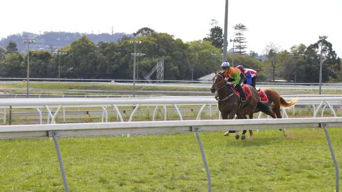 Kodajet (outside) ridden by Skye Bogenhuber tunes up for Saturday's Hopeful Plate with a Clifford Park barrier trial win last Tuesday.