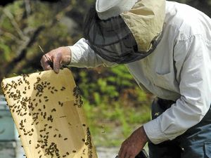 Sprays worry our beekeepers
