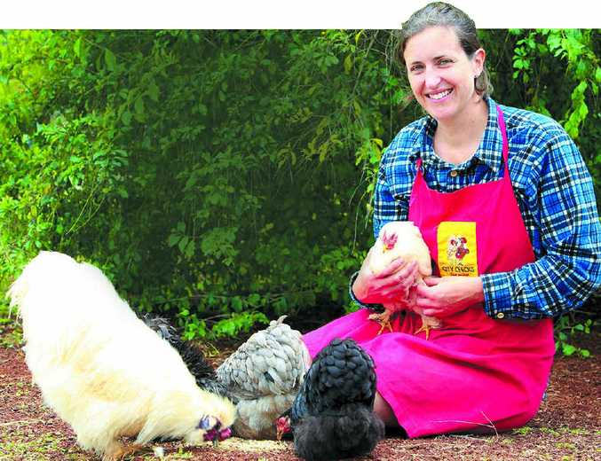 FEELING CLUCKY: City Chicks owner Kirstie Henning with some of the hens she is minding for absent owners.