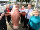 """""""Hands off our bulls"""" - Rocky tells Richmond Valley council"""