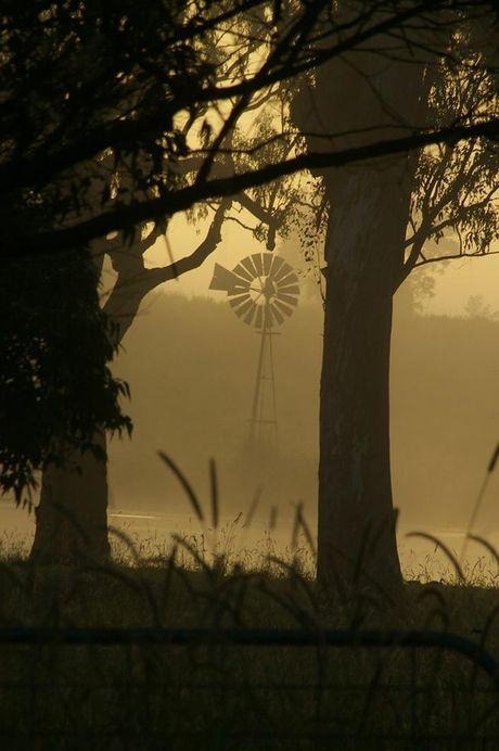 Early morning fog, Casino.