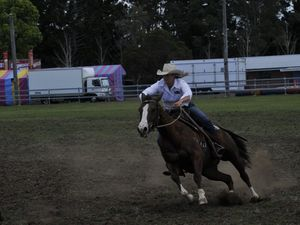 Campdrafting at the Kyogle Show