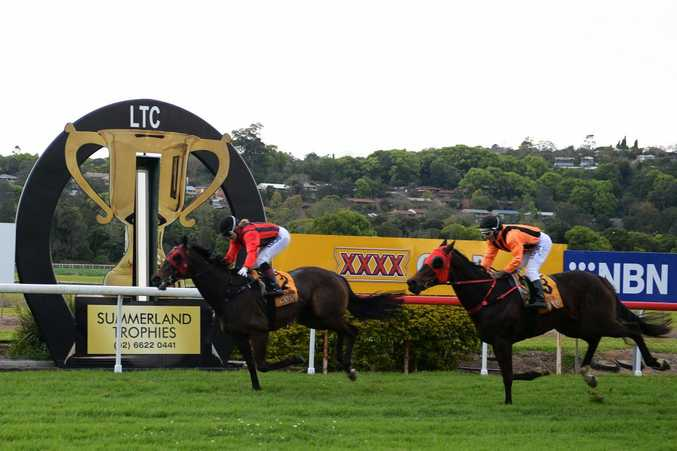 Huno Five, ridden by Tegan Harrison winner of the Lismore Cup 2014. Photo : Mireille Merlet-Shaw/The Northern Star