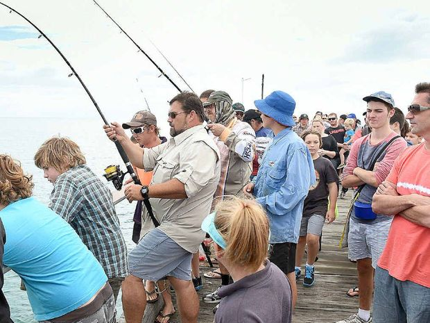 Bret Rees draws a crowd during his duel with a shovelnose shark.