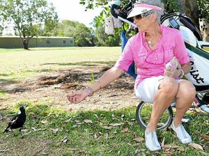 Golf club women take McGoo the magpie under their wing