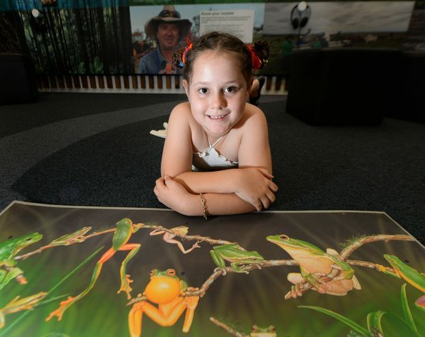 Emilyanne Bell (8) at the FLOW Centre where children can learn about local frogs. Photo: Chris Ison / The Morning Bulletin