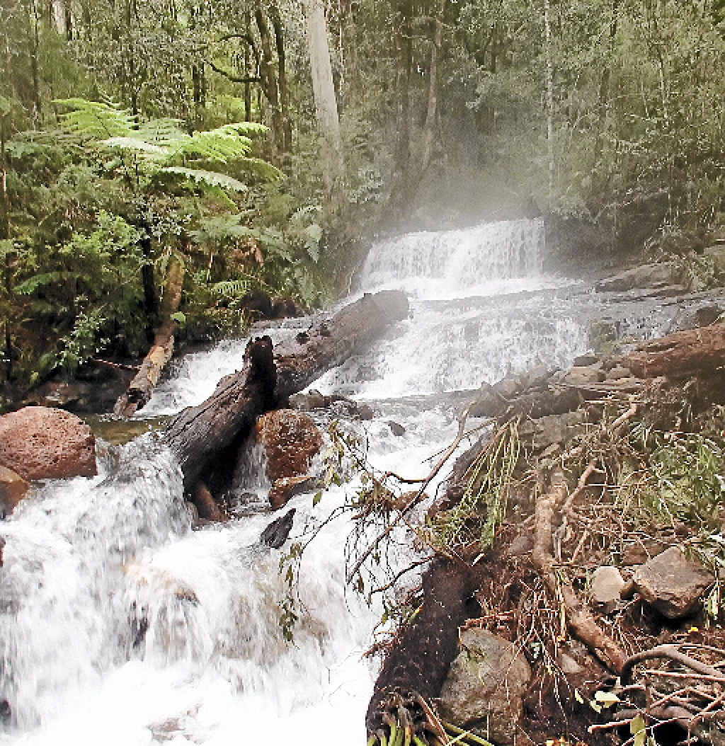 WILD WATER: A photo taken in the upper reaches of the Nymboida River. The remote terrain made it difficult to reach the body of the 60-year-old who died on Tuesday.