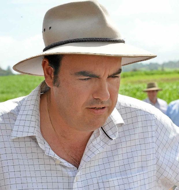 Whitsunday MP Jason Costigan