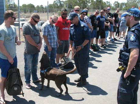 Miles Police officers join sniffer dog drug detection specialists from Brisbane to check for drugs coming in and out of Miles Airport.