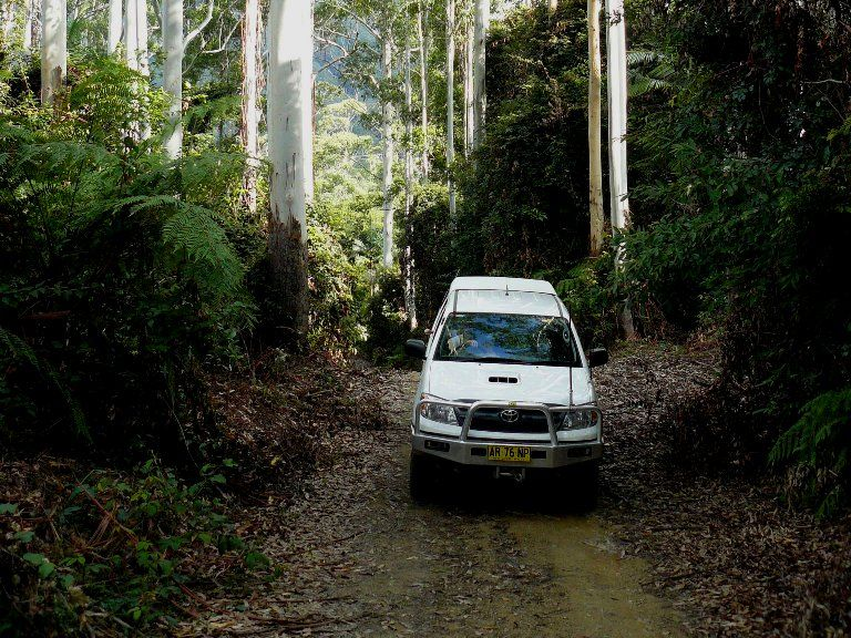 The first National Parks and Wildlife Service 4WD Discovery tour around the Coffs Coast will be held this Saturday.