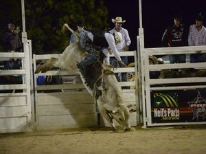 Bred to buck: Bull rider group head rejects cruelty claims